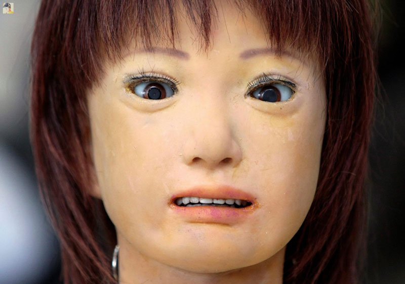 The uncanny valley is an emotional response to humanoid robots. (heinakroon.com)